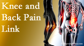 Yorkville Chiropractic and Wellness Centre treats back pain and knee osteoarthritis to help prevent falls.