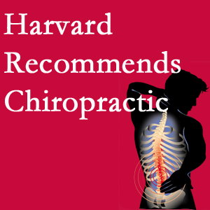 Yorkville Chiropractic and Wellness Centre offers chiropractic care like Harvard recommends.