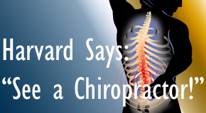 Toronto chiropractic for back pain relief urged by Harvard