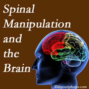 Yorkville Chiropractic and Wellness Centre [presents research on the benefits of spinal manipulation for brain function.